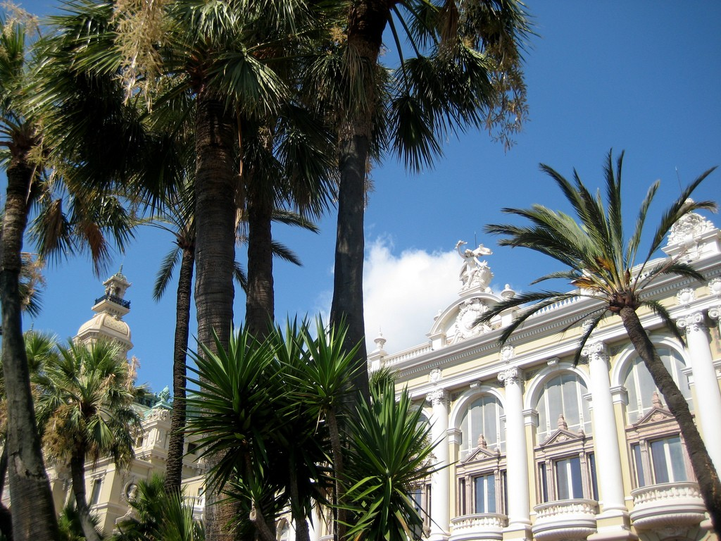 Monte Carlo Tree